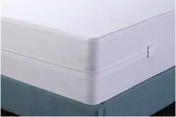 Tips merawat springbed dari kutu kasur