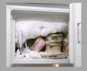 freezer dengan bunga es